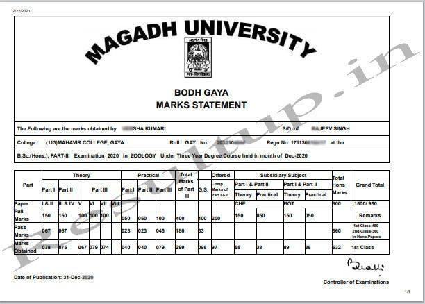 Magadh University Part 3 Mark Sheet